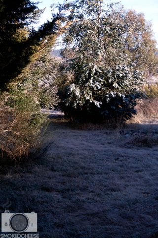 Frost 30-7-11