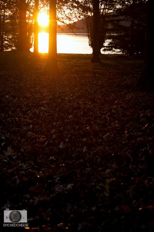 Autumn 16-5-12